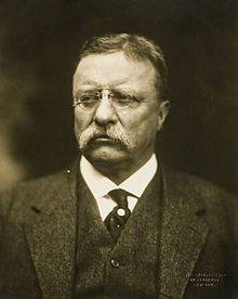 Teddy Roosevelt glasses